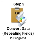 Step 5 - Convert Data - Repeating Fields  Button